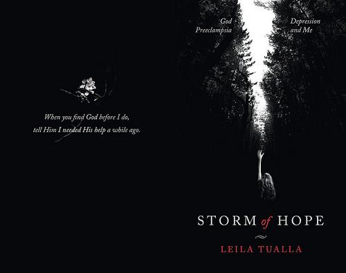 Storm of Hope full wrap